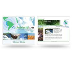 Co-Ambiental Website by David Torres Mora, via Behance
