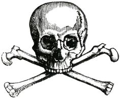 Skull & Crossbones -- Free Printable from The Graphics Fairy -- Early Halloween Image Halloween Images, Halloween Skull, Vintage Halloween, Halloween Crafts, Graphics Fairy, Memento Mori, Crane, Day Of The Dead Drawing, Skull Template