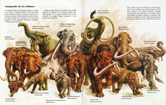 Zoobooks prehistoric elephants | This page absolutely TERRIFIED me as a kid