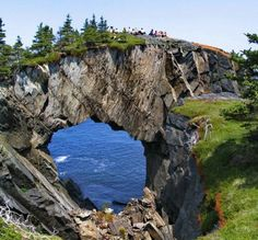 Newfoundland. Now there's a cool bridge if I've ever seen one.