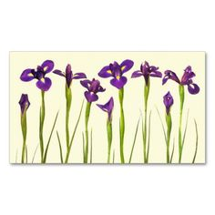 Purple Irises - Iris Flower Customized Template Business Card Template. This is a fully customizable business card and available on several paper types for your needs. You can upload your own image or use the image as is. Just click this template to get started!