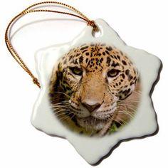 3dRose Belize, Belize City Zoo. Close up of a Jaguars face, Captive., Snowflake Ornament, Porcelain, 3-inch