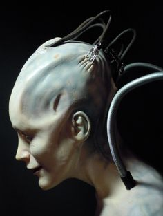 ~ Borg Queen. I know it's makeup for this role, however, it looks quite real and very eerie! ~