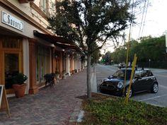 Coops arrives early at #SMUGHUGS (Sarasota Manatee User Group [HubSpot User Group]) for a Smug Hug at the Savory Street Cafe, Sarasota