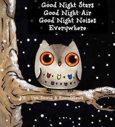 "Good Night Stars Good Night Air Good Night Noises Everywhere (from the children's story ""Goodnight Moon"" by Margaret Wise Brown) Good Night Blessings, Good Night Wishes, Good Night Sweet Dreams, Good Night Moon, Good Morning Good Night, Stars At Night, Morning Light, Quote Night, Night Owl Quotes"
