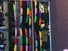 Barchette colorate