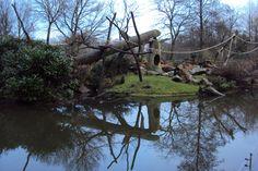Rotterdam Zoo, 19-12-2012, photo Angela Kuckartz