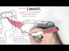 ▶ Cancer - Introduction I - YouTube
