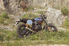 Mountain Rider F