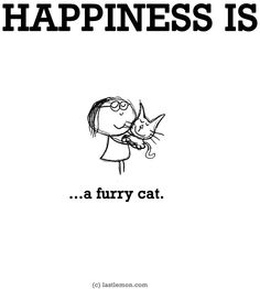 My cats make me happy Cat Quotes, Animal Quotes, Happy Quotes, Dog Cat, Crazy Cat Lady, Crazy Cats, I Love Cats, Cool Cats, Kitty Cats