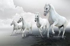 Αποτέλεσμα εικόνας για αλογα ανδαλουσιας