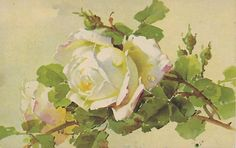 ARTIST-SIGNED-CATHERINE-KLEIN-1910s-20s-unused- PC -VERY NICE & RARE-108    eBay