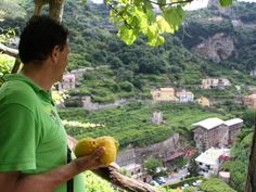 Im Zitronenland!!!! What they say about us in Germany!!! Lemon Tour in Amalfi Coast!!!