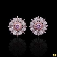 Novel Collection Asia (@novelcollectionasia) on Instagram: Last of our pink diamond earrings trio goes to a pair of rare fancy purple pink studs with delicate halo of pink diamonds and larger halo of white diamonds! All from Novel's exclusive selection of rare fancy color diamonds.