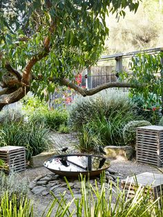 Backyard garden ideas how to build a small garden,plant your own garden house garden landscape design,how to plan out a vegetable garden outdoor garden items. Australian Garden Design, Australian Native Garden, Australian Plants, Australian Bush, Backyard Garden Design, Backyard Landscaping, Coastal Landscaping, Landscaping Ideas, Side Garden