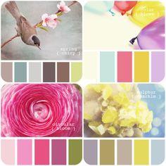 fun color palettes