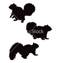 Squirrel silhouettes vector by JRMurray76 - Image #727264 ...