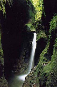 Gorges de la Falaise- Ajoupa-Bouillon. En plein cœur de la forêt tropicale,une belle destination pour les amoureux de la nature.