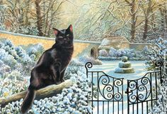Chrissie Snelling - Winter Cat
