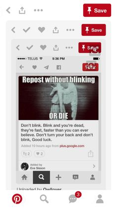 Btw everyone: for those of you who don't know, this is NOT chain mail. This is a doctor who reference, the Weeping Angels. That quote (don't blink, blink and you're dead...), is an actual line from the show