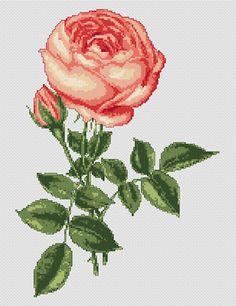 Rose Free Cross Stitch Pattern