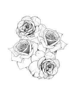 rose tattoo design/ just one coloured!