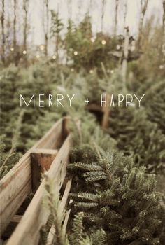 Warmest Wishes | minted.com/julep