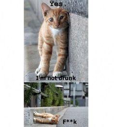I'm not drunk! :D