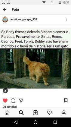Então quer dizer que a culpa é do Rony?😱😱😱 Always Harry Potter, Mundo Harry Potter, Harry Potter Draco Malfoy, Harry Potter Drawings, Harry Potter Tumblr, Harry Potter Anime, Harry Potter Hermione, Harry Potter Fan Art, Harry Potter Universal