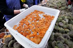 Picture of a tray of sea urchin roe at a processing facility in Portland, Maine