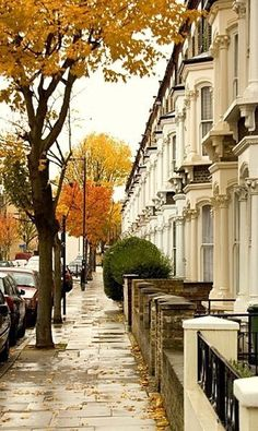 thepreppyyogini:  London row houses in Autumn
