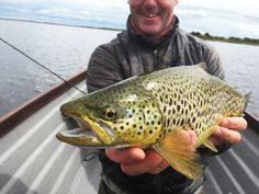 A pretty brown trout from Ireland's Lough Corrib