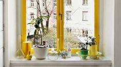 Inspiratie boost: gekleurde kozijnen en deurposten Hier wordt je toch vrolijk van!