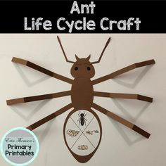 Nursery Activities, Craft Activities For Kids, Science For Kids, Preschool Crafts, Toddler Activities, Preschool Activities, Math Projects, Projects For Kids, Ant Crafts