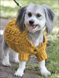 Crochet e-Patterns for Pets Crochet Dog Sweater, Crochet Yarn, Dog Crochet, Pet Sweaters, Dog Jacket, Pet Dogs, Doggies, Knitting Accessories, Dog Coats