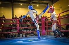 Photo from Muay Thai Kupa Monor collection by Muay Thai Kupa Monor
