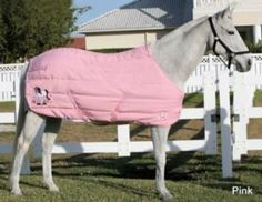 MOLLY STABLE BLANKET by JPC. $89.10. MOLLY STABLE BLANKET - LT GREY - 64