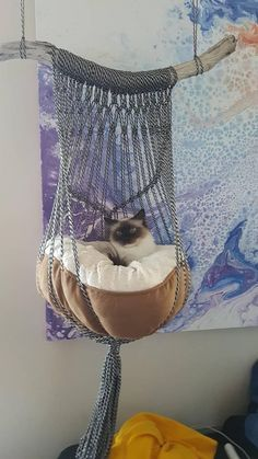 One of a kind handmade macrame cat bed. Black & white rope, coral or natural cot… ) ) One of a kind handmade macrame cat bed. Black & white rope, coral or natural cot… Pet Beds, Dog Bed, Cat Room, Cat Sleeping, Black Bedding, Cat Furniture, Luxury Furniture, Furniture Ideas, Furniture Design