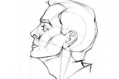 Summarizing Andrew Loomis's approach to drawing the head. It's a great method for drawing the head from various angles. Draw the head from the front, side / . Drawing Heads, Guy Drawing, Life Drawing, Figure Drawing, Painting & Drawing, Gesture Drawing, Drawing Lessons, Drawing Techniques, Art Abstrait