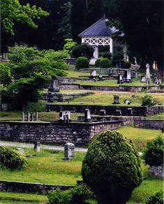 Cemetery Photo Contest winner