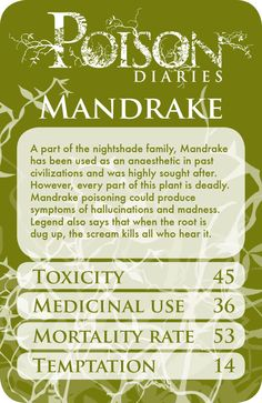 Guys mandrake is actually real, I feel so stupid. I thought it was a made up plant. I am so stupid