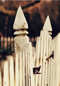 Prodigious Front yard fence options,Privacy fence trees and Front yard fence corner lot. Small Fence, Front Yard Fence, Fence Gate, Fence Panels, Wire Fence, White Picket Fence, Picket Fences, Wooden Fences, Fence Trees