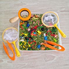 Sensory Tub - minibeast activities theme green spilt peas, bugs beetles along with tweezers, bug catchers and magnifying glasses.