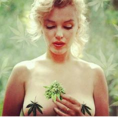 very interesting...Ms. Monroe must have indulged herself. Smart girl.