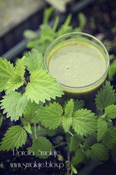 Zielony koktajl z pokrzywy Fitness, Smoothies, Juice, Cocktails, Herbs, Fruit, Food, Diet, Health