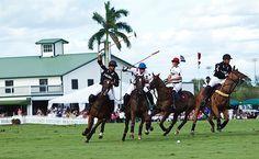 Nespresso US Open Polo Championship Finals Wellington Florida, Polo Horse, Polo Match, Palm Beach County, Polo Club, Nespresso, Places To See, Finals