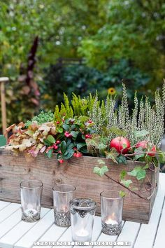 Trädgårdsflow: Time for autumnal to-do-things Autumn Decorating, Fall Decor, Autumn Inspiration, Christmas Inspiration, Fall Containers, Fall Arrangements, Fall Planters, Deco Floral, Fall Table