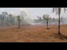 (51) Zmiany klimatu a zrównoważone rolnictwo - YouTube