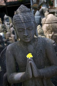 """""""Should a person do good,  let him do it again and again.  Let him find pleasure therein,  for blissful is the accumulation of good. """"   ~  Gautama Buddha,  Dhammapada, v. 118   ॐ"""