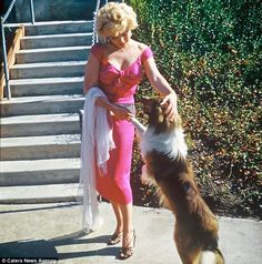When Lassie met Marilyn. Such a lovely photo. Taken at Bandleader Ray Anthony's Party dedicated to Marilyn, 1952 Estilo Marilyn Monroe, Marilyn Monroe Fotos, Classic Hollywood, Old Hollywood, Most Beautiful Women, Beautiful People, Howard Hughes, Cinema Tv, Actrices Hollywood